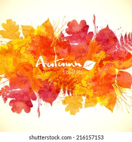 Watercolor painted orange autumn leaves vector background