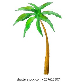 Watercolor palm tree isolated on white background. Art logo design