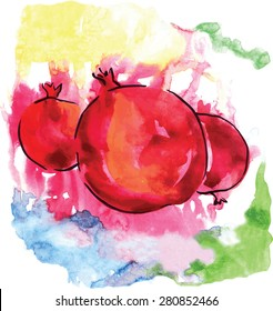 Watercolor pomegranates, hand drawn, vector