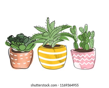 watercolor potted plants and succulents