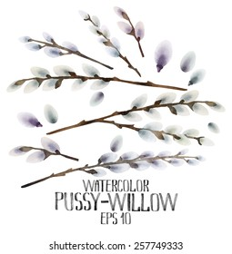 Watercolor pussy-willow set. Spring branches. Easter decorations. Vector design elements isolated on white background