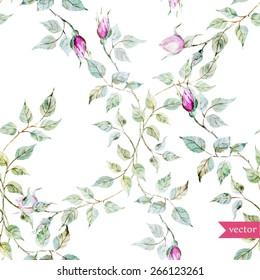 watercolor, rose, painting, plant, flower, bud, vintage, retro, wallpaper, pattern