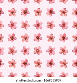 Watercolor sakura seamless pattern white pink flower petal texture background, vintage hand drawn japanese spring cherry blossom seed bloom illustration, floral fabric template fashion graphic vector