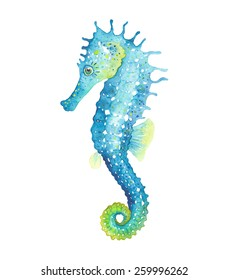 Watercolor seahorse, vector illustration.