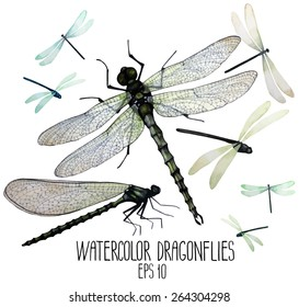 Watercolor set of dragonflies. Top, front views.  Vector illustration isolated on white background