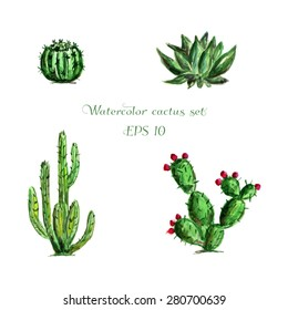Watercolor set of four green Mexican cactus. Different cactus with flowers. Latin American cactus. Plant collection. Vector illustration. Round cactus, big cactus, Latin  American plants cactus.