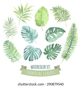 Watercolor set with tropical leaves. Vector element for your design.