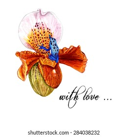 Watercolor Slipper Orchid & Blue Tropical Frog, isolated on white background. Vector Element for your design. Hand drawn botanical illustration for Save the Date & Valentines day cards, covers.