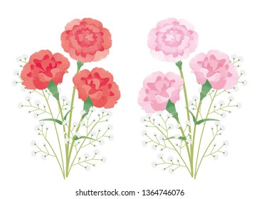 Watercolor style illustration of carnation