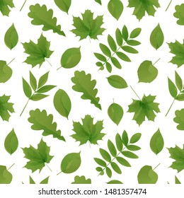 Watercolor style leaves pettern. Green vector forest leaves background.
