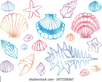 Watercolor style line drawing illustration set of scallops, snails and starfish