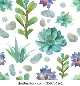 Watercolor succulents pattern. Seamless texture with objects: plants, succulent, stones. Hand painted vintage gardening background. Vector floral background.