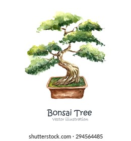 Watercolor Tree Bonsai. Hand draw japanese tree. Vector illustrations.