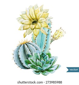 watercolor tropical vector drawing with cactus