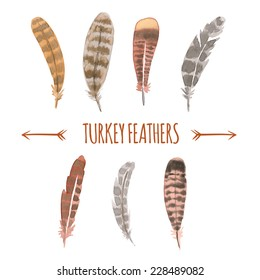 Watercolor Turkey Feathers Collection.