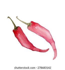 Watercolor vector chili