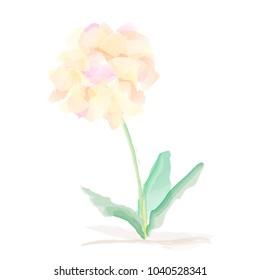 Watercolor Vector Flower - light Watercolour Flower.