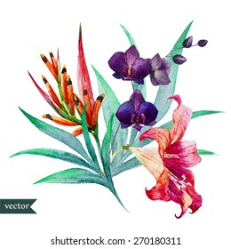 watercolor, vector, flower, lily, botany, palm leaves, orchids, birds of paradise,