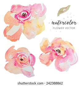 Watercolor Vector Flowers. Painted Watercolour Florals