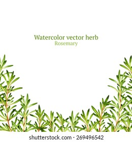 Watercolor vector frame with rosemary
