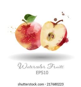 Watercolor vector fruits. Apple