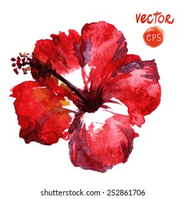 Watercolor vector red hibiscus. Tropical Flowers single element watercolour flower. Isolated on white background. vector element for your design. red exotic paradise hibiscus. painted hibiscus