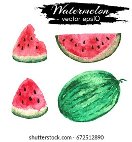 Watercolor watermelon. Vector whole watermelon and slices of watermelon.Hand drawn vector illustration of fruit watermelon isolated on white background.