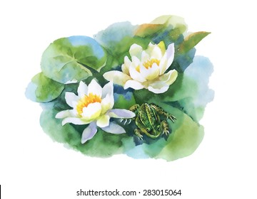 Watercolor white water-lilly flowers pattern with frog on pond vector illustration