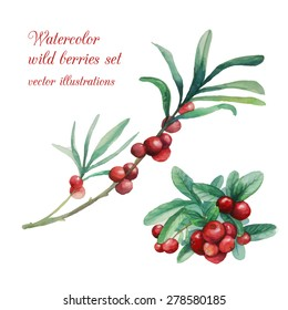 Watercolor wild berries branches set. Hand drawn isolated natural elements: cranberry, leaves, twigs. Vector illustration