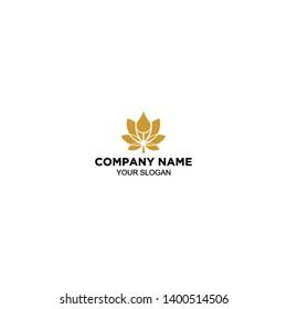 waterdrop and lotus logo design