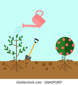 Watering can sprays water drops. New plant, sprout, sapling with shovel, spade isolated on background. Gardening, planting process concept. Grow tree from the seed. Vector flat illustration