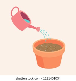 watering coriander Seeds in a pot are Growing up is a soft shoot Flat Vector illustration.