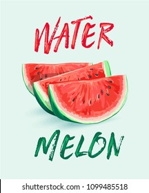 watermelon illustration on green background