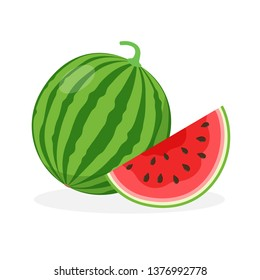 Watermelon and juicy watermelon slice vector illustration in flat design isolated on white background.