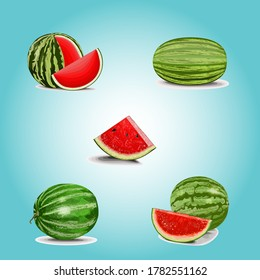 Watermelon on color background. Vector illustration, Watermelon icon set