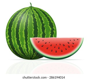 watermelon ripe juicy vector illustration isolated on white background
