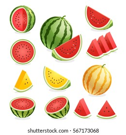 Watermelon. Vector illustration.