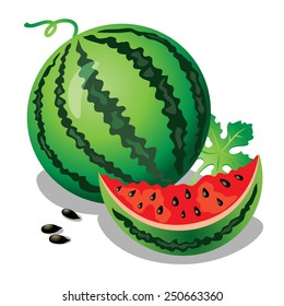 Watermelon. A whole and a slice of watermelon with leaf