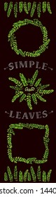 Wattles (acacias) leaves pattern package.  Green eco botanical frames set - round, square, wreath, line border.