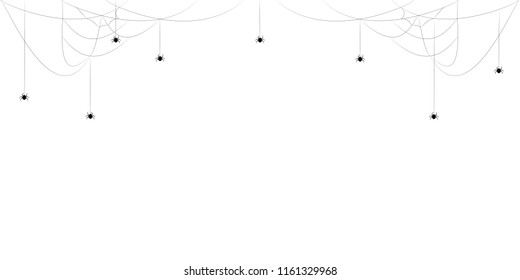 A web with a spider. Vector illustration.