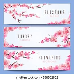 Wedding banners template with spring japan sakura, cherry blossom