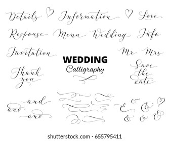 Wedding calligraphy isolated on white. Save the date, love, information, response, details, thank you, menu words. Ampersands and catchwords. Great for wedding invitations, cards, photo overlays.