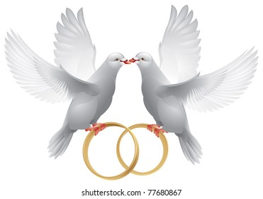 Wedding doves with rings, symbol of love and wedding, Decoration vector item for marriage