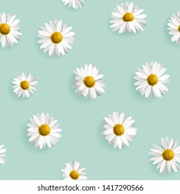Wedding invitation card. Background decorated with yellow white daisy chamomile flowers bouquet. Sky blue background. Vector design illustration.