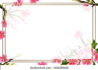 Vectores Imágenes Y Arte Vectorial De Stock Sobre Blank