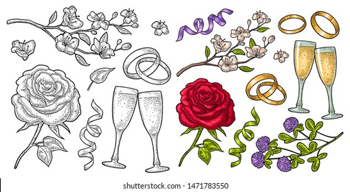 Wedding set vintage color vector engraving isolated on white. Rose flower with leaves, two bonded rings, serpentine ribbon, clinking glasses champagne, clover, cherry branch. For greeting card, invite