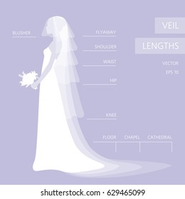 Wedding Veil Lengths. Different models. Beautiful bride in profile. Infographics