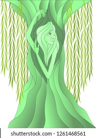 weeping willow in the image of not young women