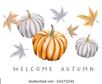 Welcome Autumn design template print with orange, gray pumpkins, maple leaves. Vector Halloween illustration. October harvest background. Organic vegetable garden food. Nature design. Fall season