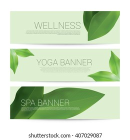 Wellness Spa Yoga banner template flyer menu cover, vector illustration